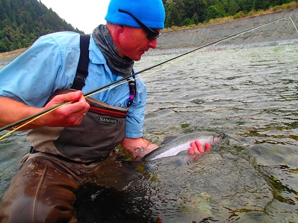 Wolf was on fire.  I never saw someone hook so many steelhead in a 3 day period