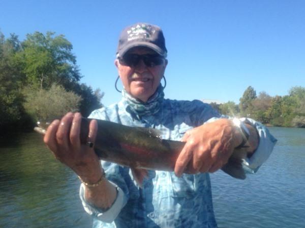 Bob landed several big fish today