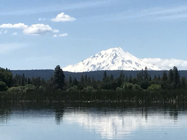 Shasta looking beautiful covered in snow