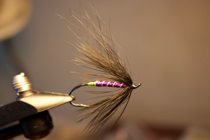 A simple feather wing for early and late in the day