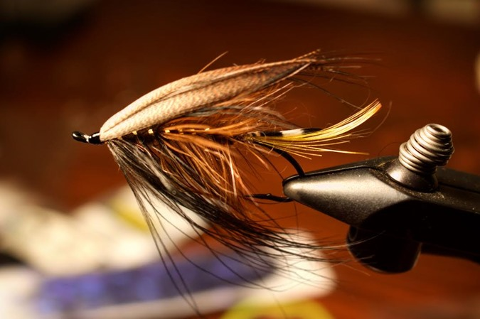 A traditional Spey Fly. Nothing says classic like a feather wing.