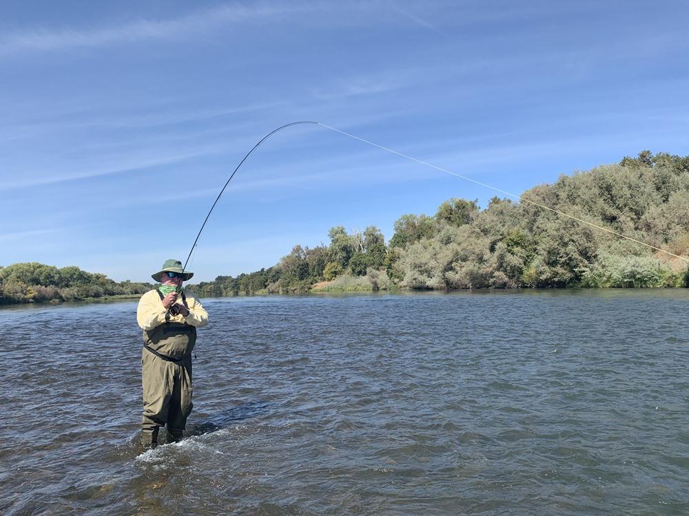 Tom fishing dries