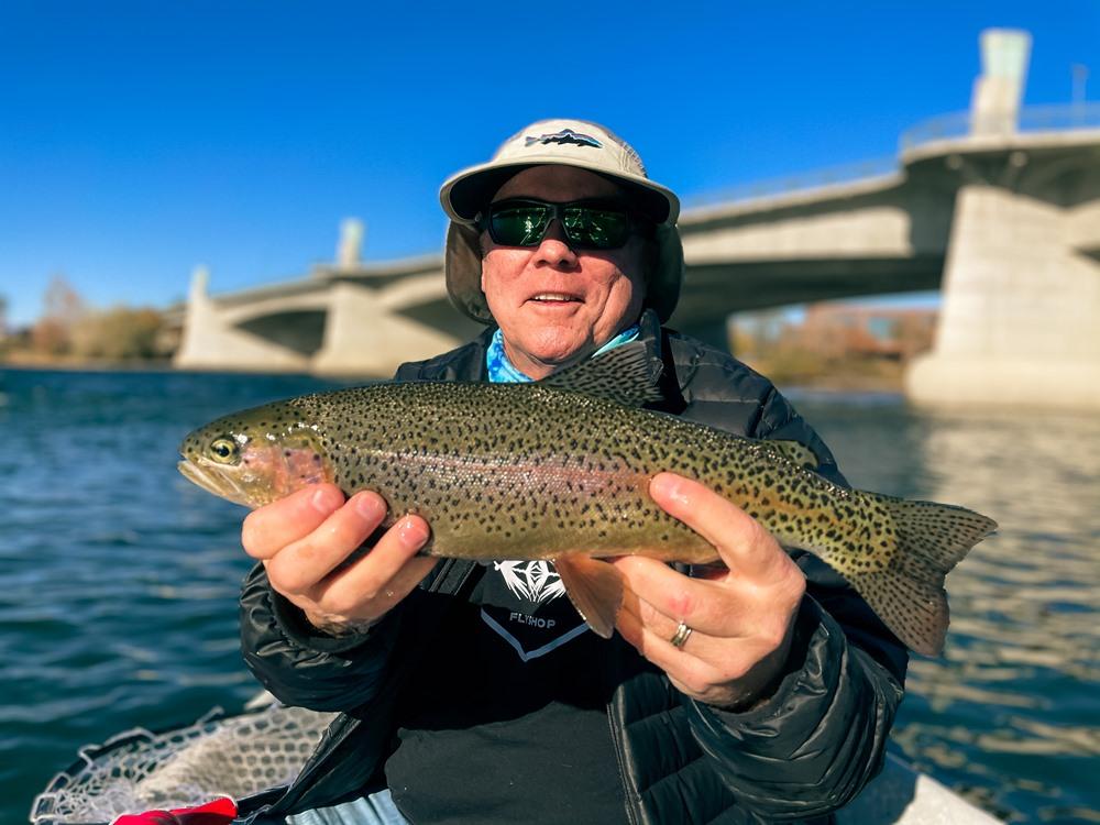 A healthy Lower Sac trout troll that lives under a bridge!