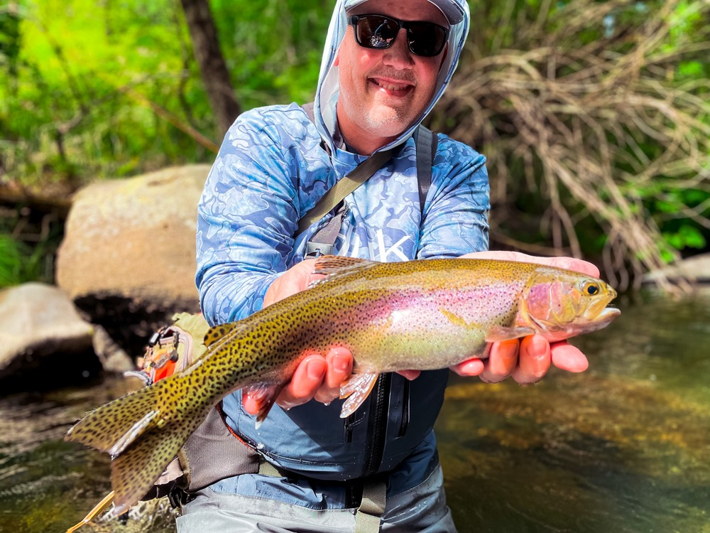 A fat and healthy trout…