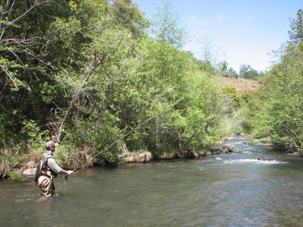 Battle Creek Fishing Image