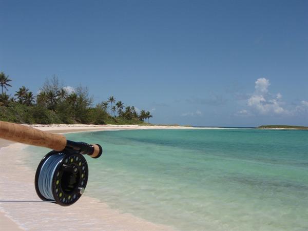Hosted Travel Fishing Image
