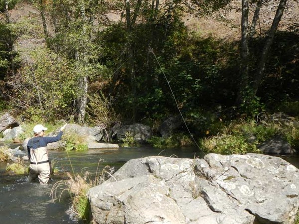 McCloud River Fishing Image