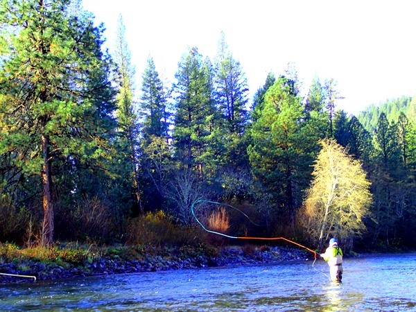 Trinity River Fishing Image