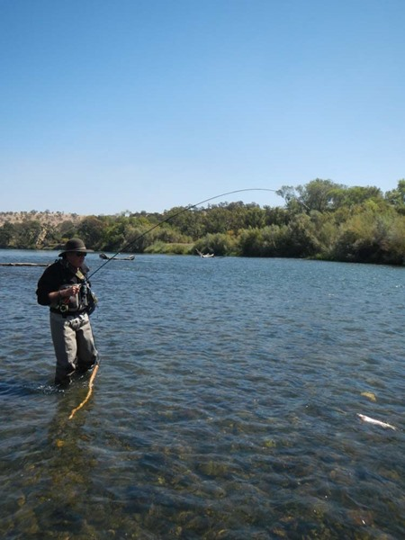 Wading the Lower Sac