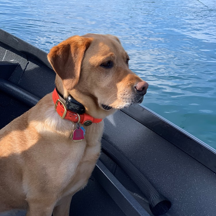 Kai was the perfect First Mate